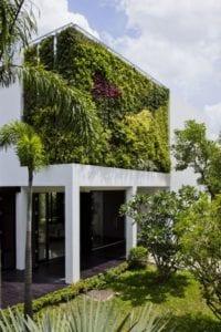 Revêtement mur extérieur maison - végétal